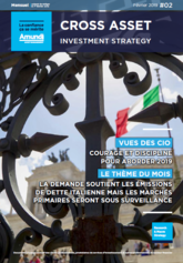 Cross asset investment strategy - février 2019