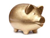 PEA banniere cochon doré